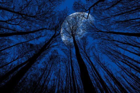 night, moon, night sky